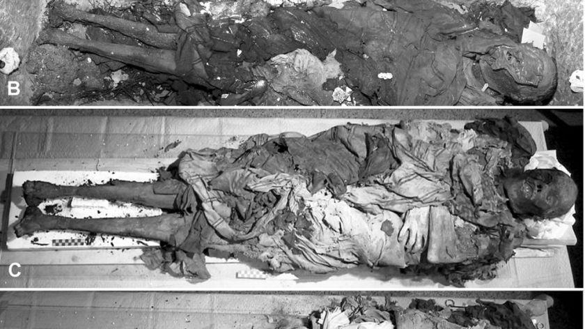 cangrande-della-scala-mummia-3
